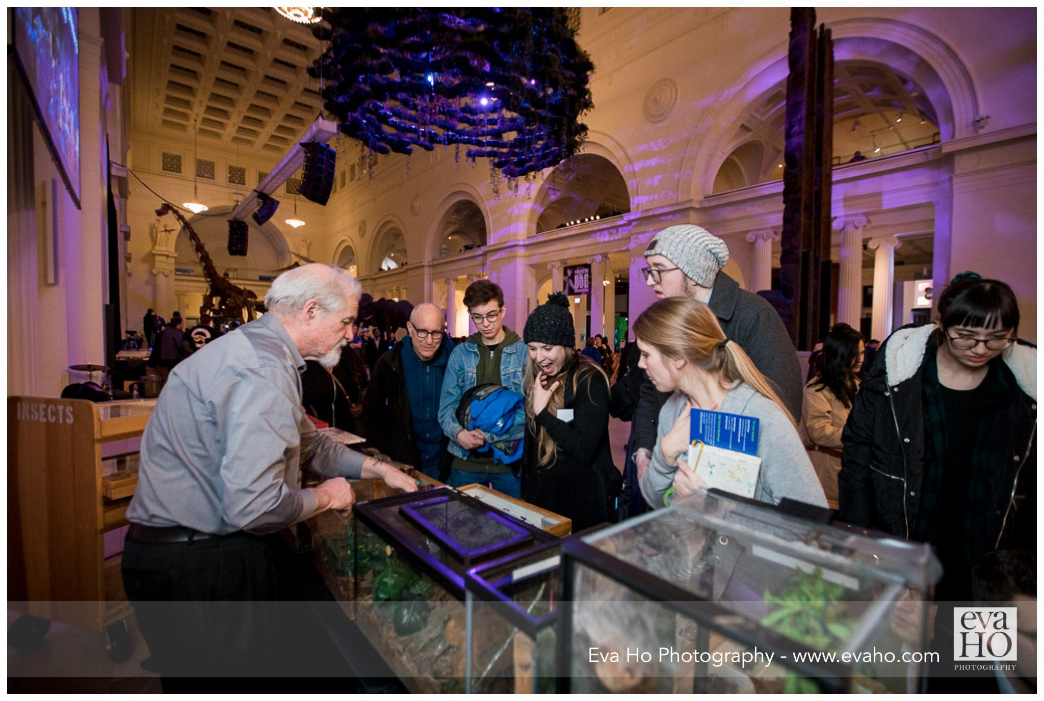 guests excited to see exhibits at Night of Ideas, Field Museum