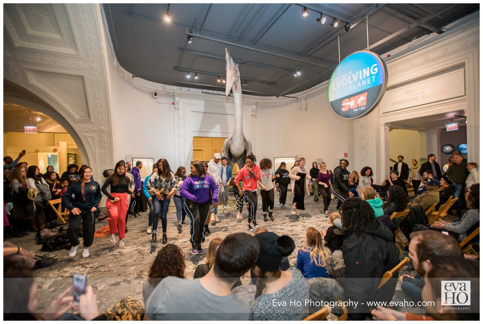 movement group performing at Field Museum