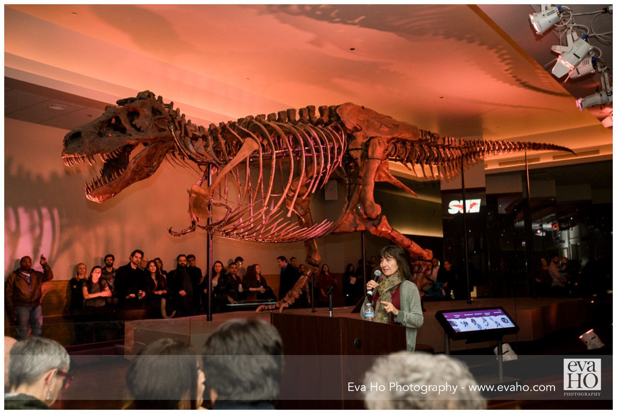 speaking amongst the dinosaurs at Night of Ideas
